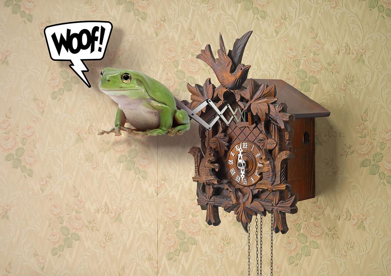 art-work-cuckoo-clock